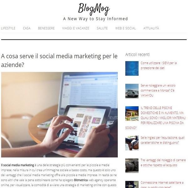 blogmog
